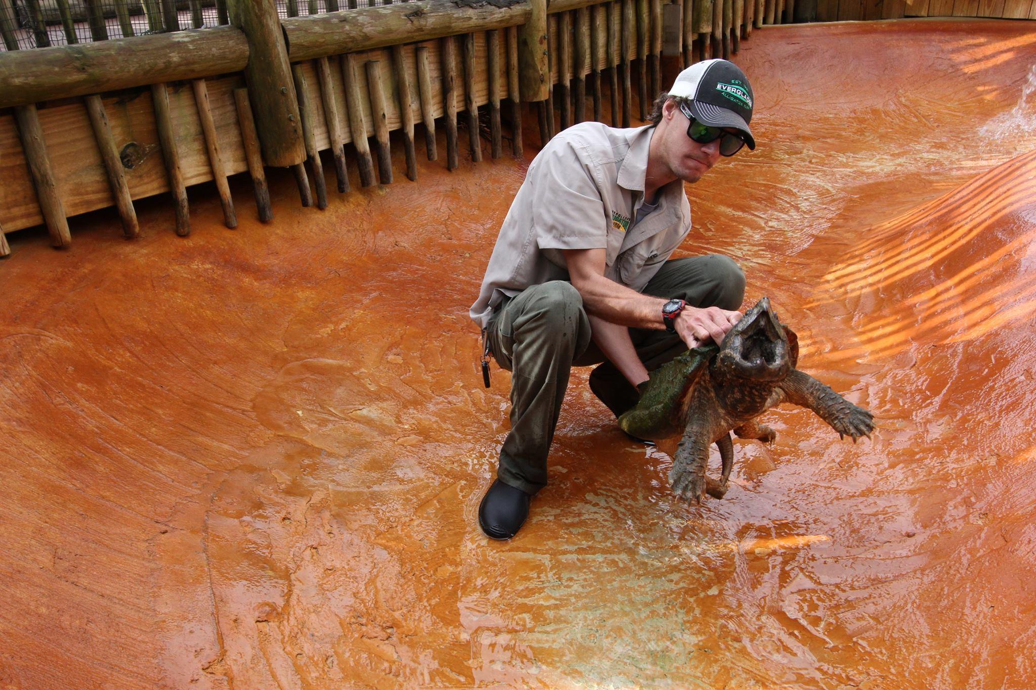 Everglades Alligator Farm - Homestead Webpagedepot
