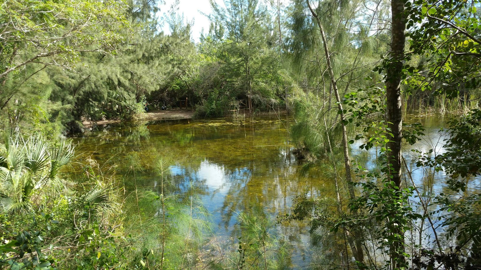 Everglades Archers - Homestead Webpagedepot