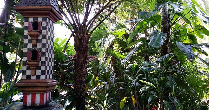 Excelsa Gardens Nursery - Loxahatchee Convenience