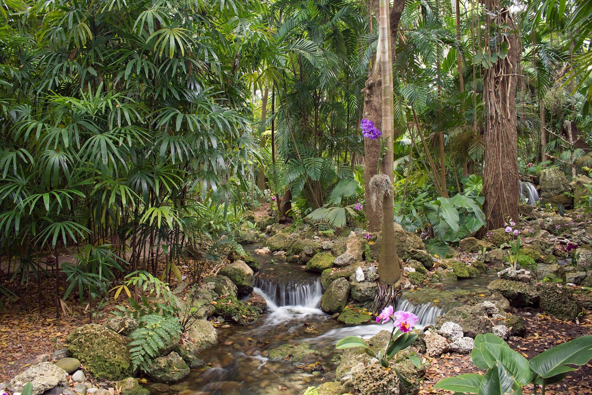 Fairchild Tropical Botanic Garden Webpagedepot