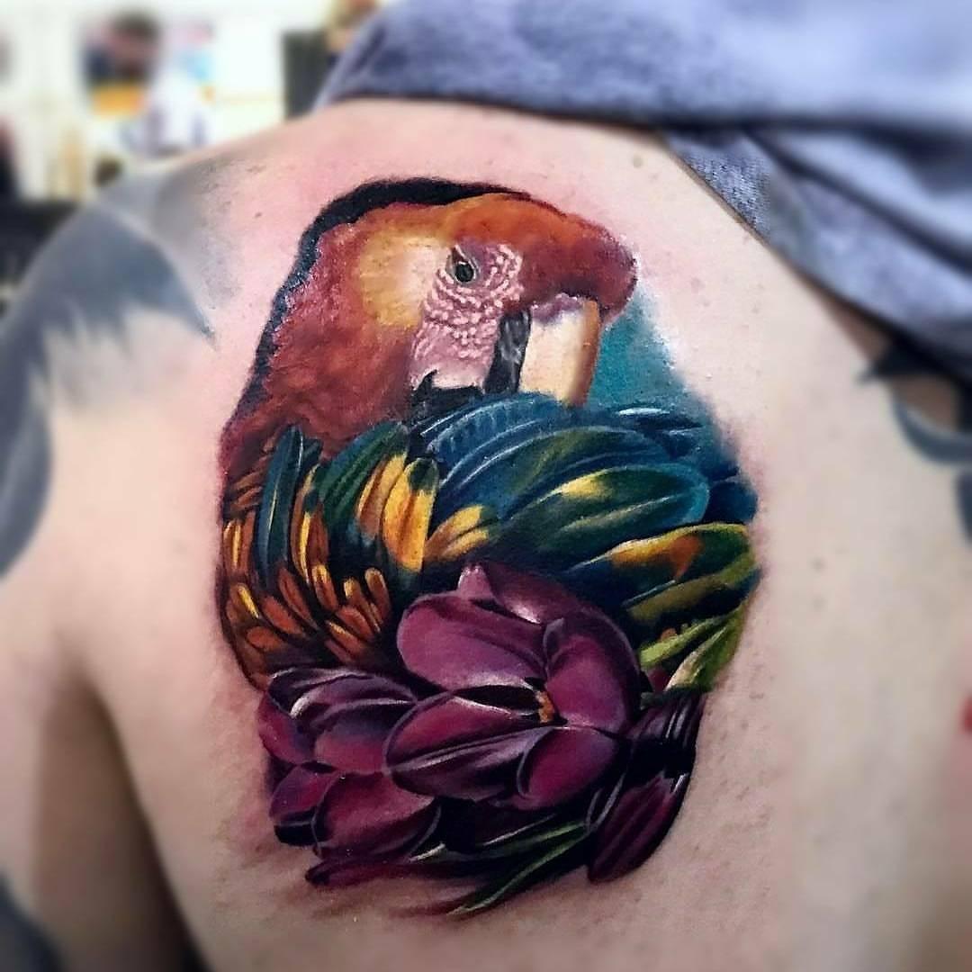 InkaHolik Tattoos - Miami Regulations