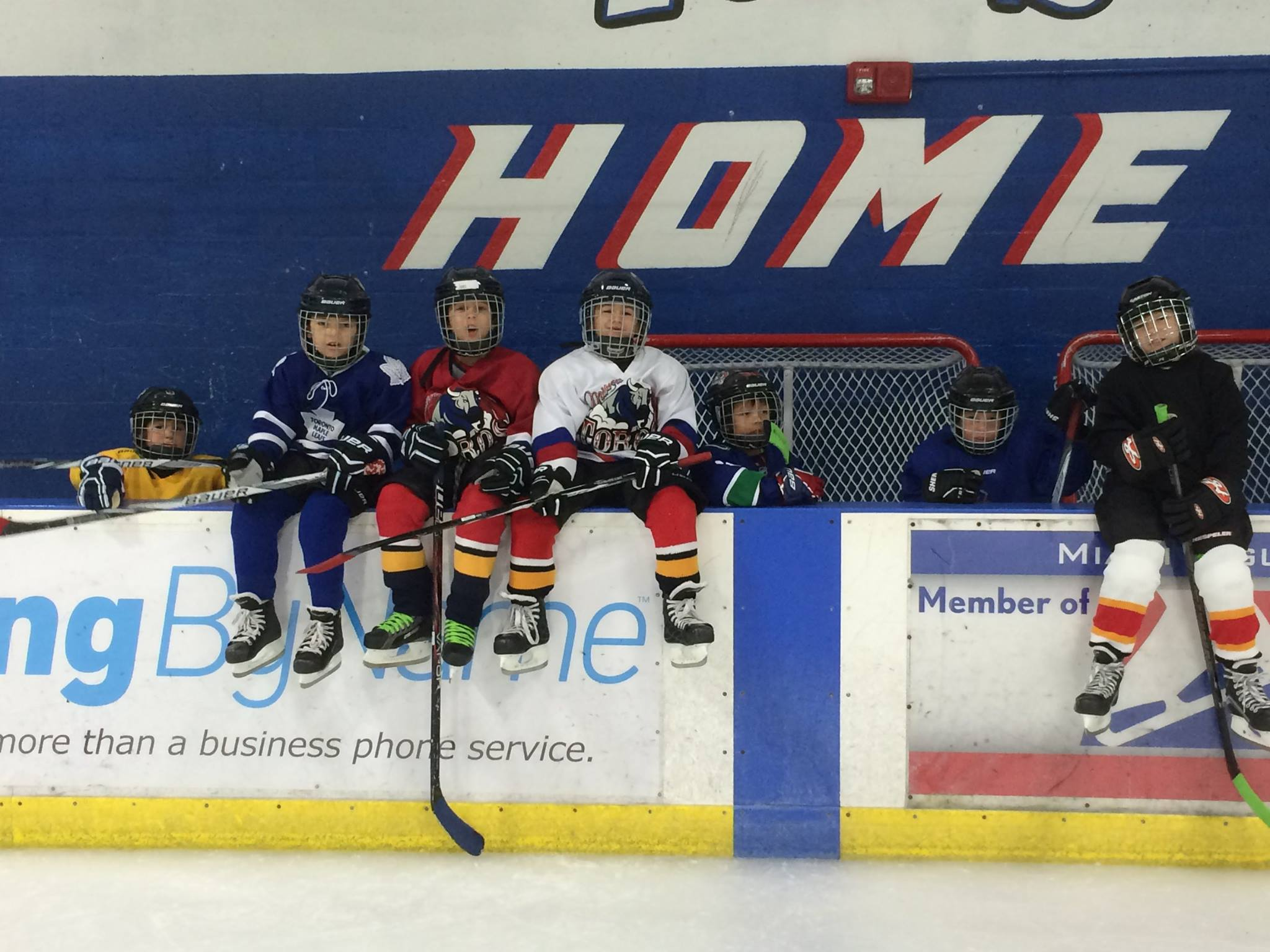Kendall Ice Arena Webpagedepot