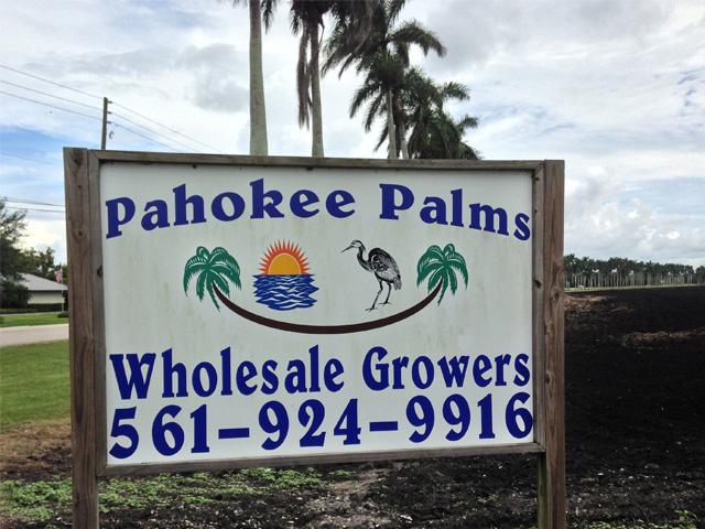 Pahokee Palms - Pahokee Accessibility