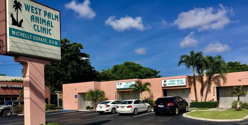 West Palm Animal Clinic - West Palm Beach Veterinarian