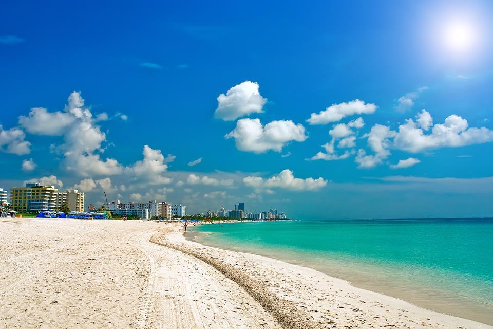 Dorchester Miami Beach Hotel & Suites - Miami Beach Informative