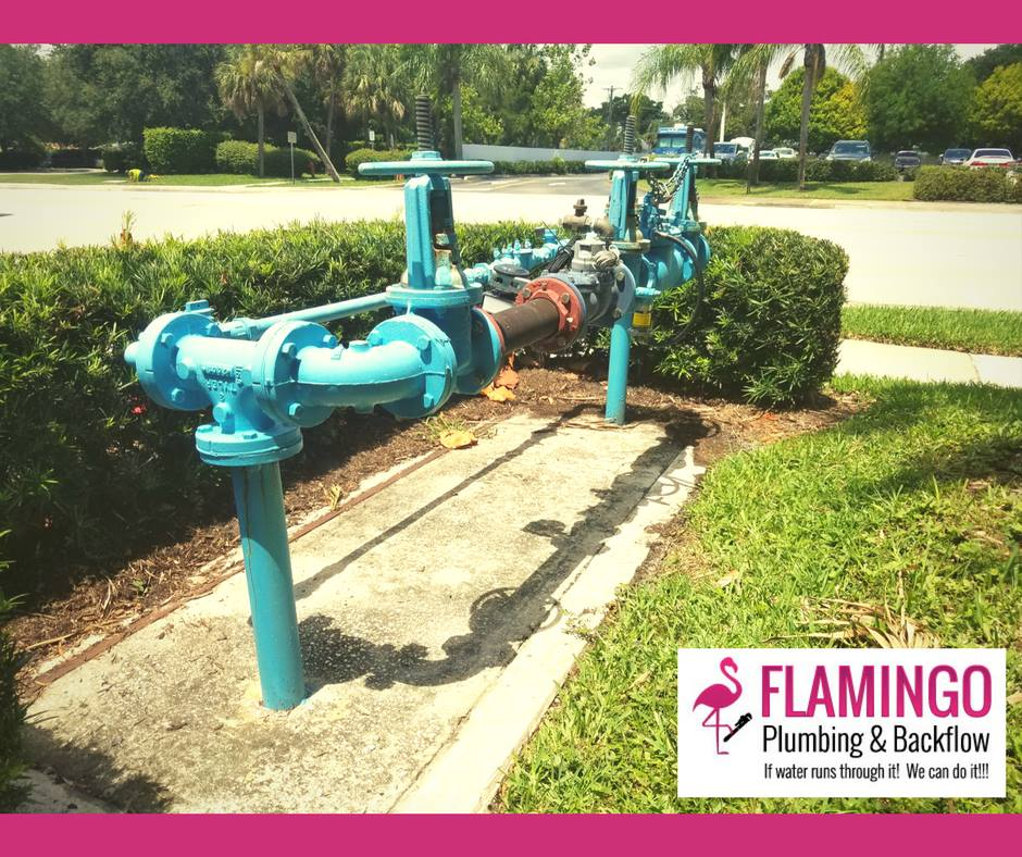 Flamingo Plumbing & Backflow Services Appointments