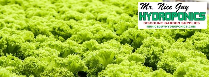 Palm Beach Hydroponic Supply - West Palm Beach Webpagedepot