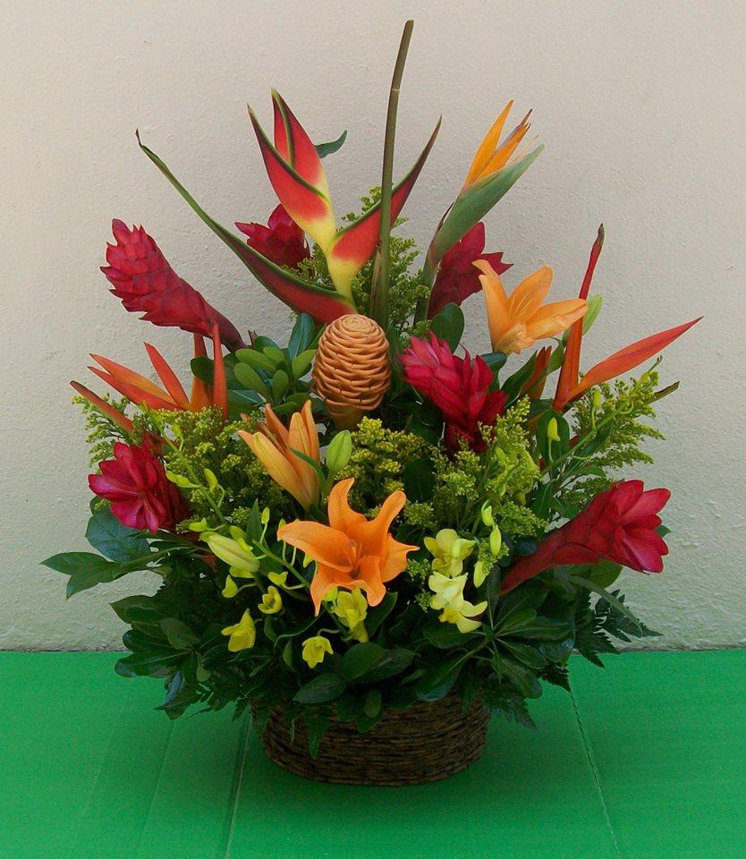 Nila's Flowers - Miami Beach Informative