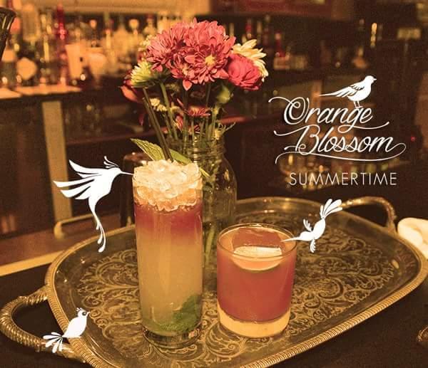 Orange Blossom - Miami Beach Information
