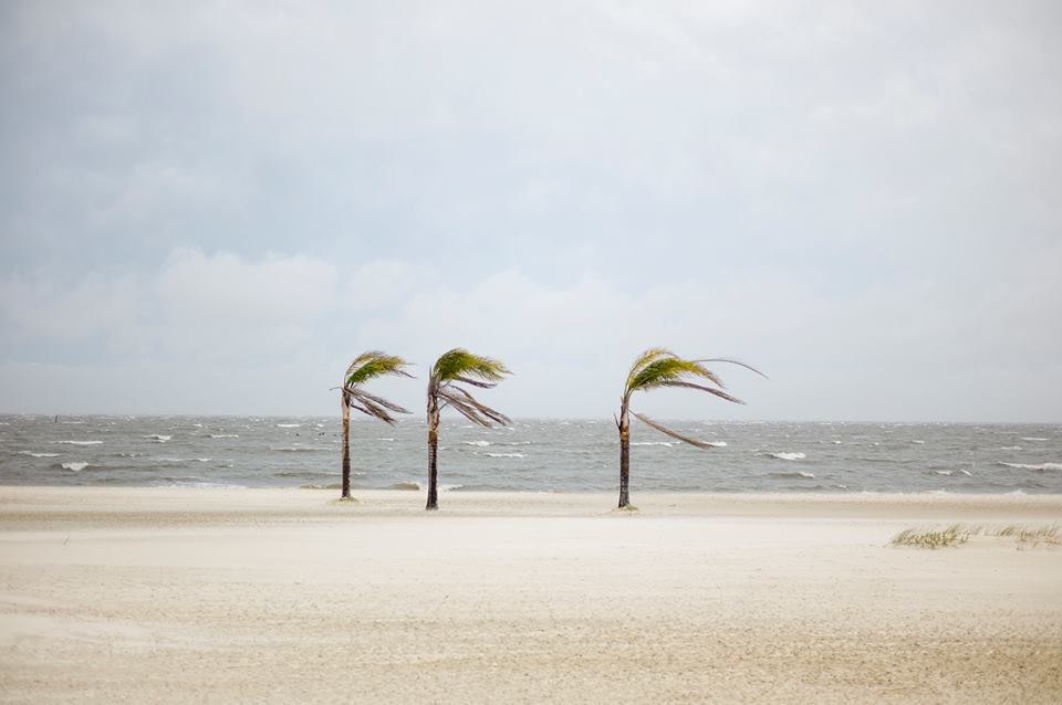 Palm Beach Photographic Centre Audio/mobile