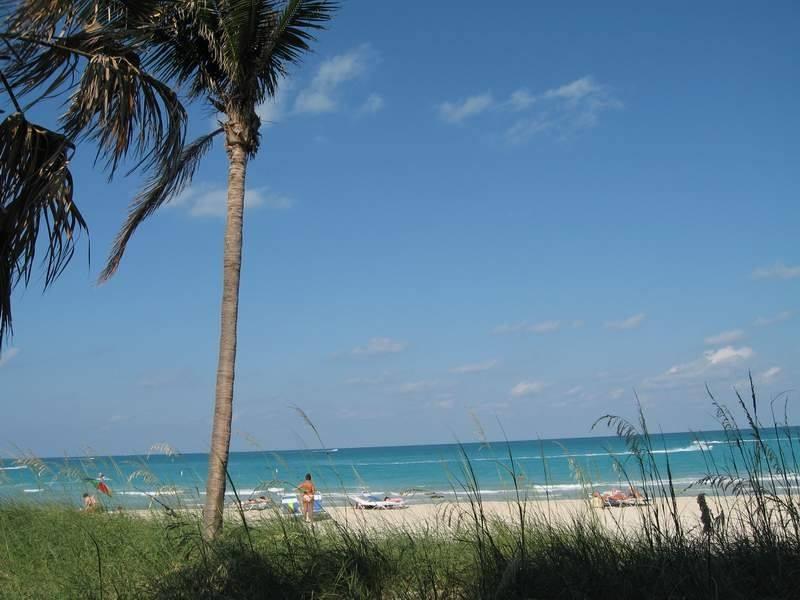Seagull Hotel Miami Beach - Miami Beach Informative