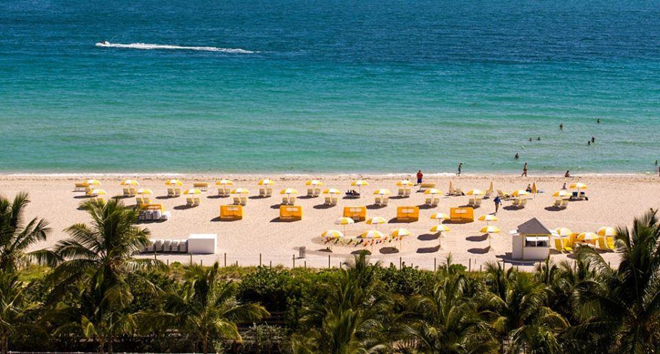 Seagull Hotel Miami Beach - Miami Beach Contemporary