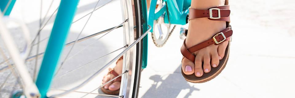 Shoe Carnival Information