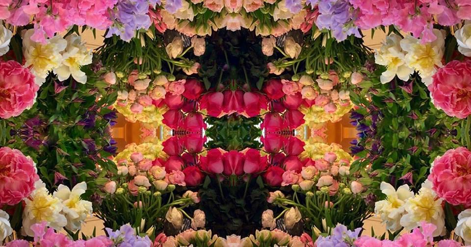 Amazing Flowers Miami - Sunny Isles Beach Informative
