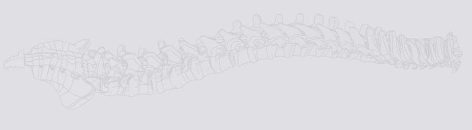 Atlas Spine - Jupiter Webpagedepot