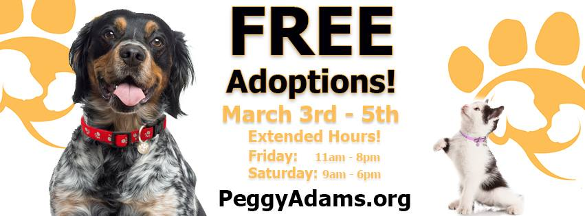 Peggy Adams Animal Rescue League - West Palm Beach Establishment