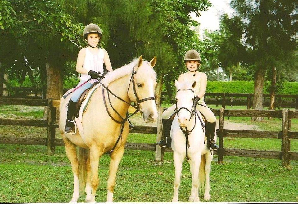 Ravenwood Riding Academy - Wellington Webpagedepot