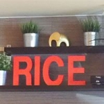 Rice Asian House & Sushi Bar - Sunny Isles Beach, Rice Asian House & Sushi Bar - Sunny Isles Beach, Rice Asian House and Sushi Bar - Sunny Isles Beach, 17100 Collins Avenue, Sunny Isles Beach, Florida, Miami-Dade County, Japanese restaurant, Restaurant - Japan, sushi, miso, sashimi, tempura,, , restaurant, burger, noodle, Chinese, sushi, steak, coffee, espresso, latte, cuppa, flat white, pizza, sauce, tomato, fries, sandwich, chicken, fried
