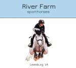 River Farm Sporthorses (South) - Wellington, River Farm Sporthorses (South) - Wellington, River Farm Sporthorses (South) - Wellington, 14270 Palm Beach Point Boulevard, Wellington, Florida, Palm Beach County, Equestrian activities, Activity - Equestrian, horse, equestrian, riding, stables, , horse, race, ride, training, stable, animal, sport, equestrian, Activities, fishing, skiing, flying, ballooning, swimming, golfing, shooting, hiking, racing, golfing