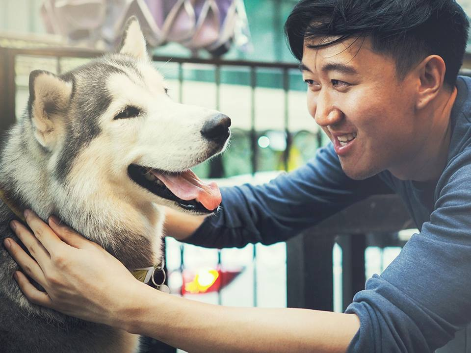 VCA Aventura Animal Hospital & Pet Resort - Aventura Veterinarians