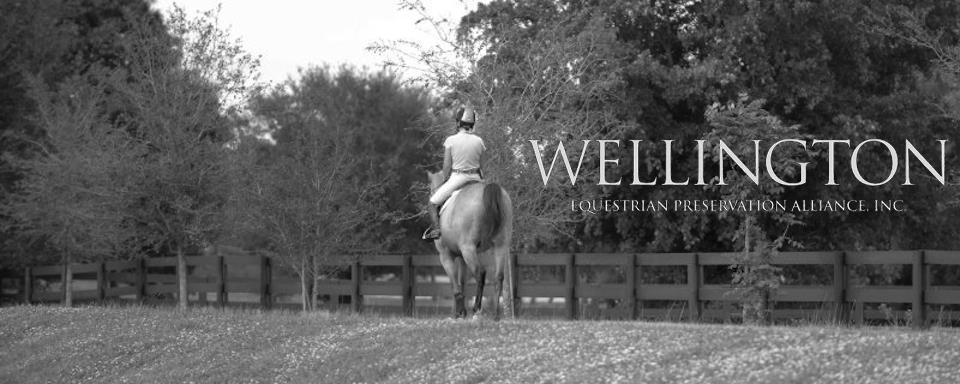 Wellington Equestrian Club - Wellington Webpagedepot
