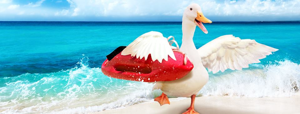 Aflac Insurance Agent - Tequesta Accommodate