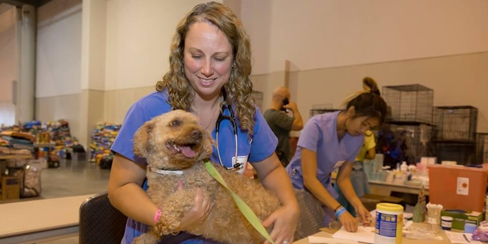 Banfield Pet Hospital - Jupiter Themselves