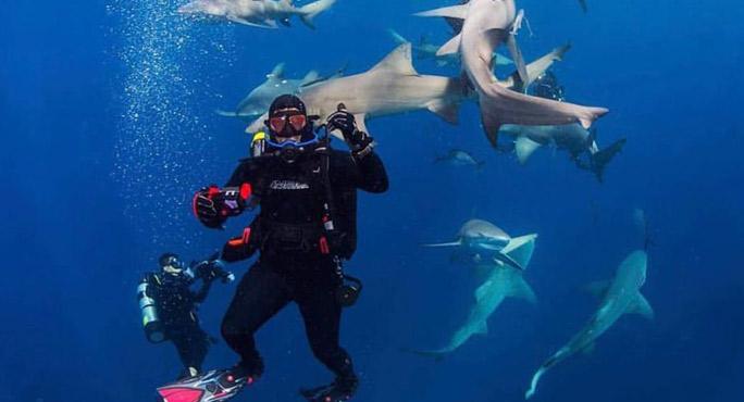 Calypso Dive Charters - Riviera Beach Webpagedepot