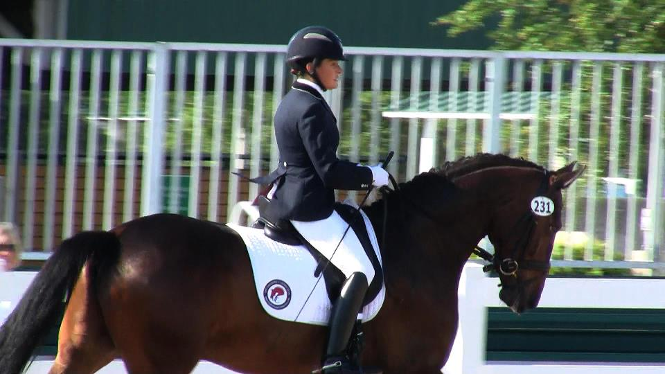 Dressage Connection - Wellington Informative