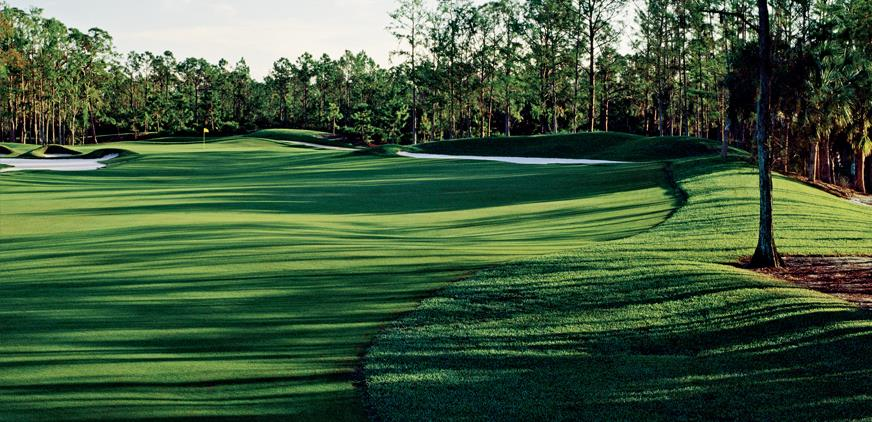 The Dye Preserve Golf Club - Jupiter Informative