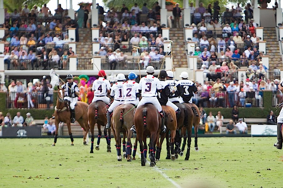International Polo Club Appointments