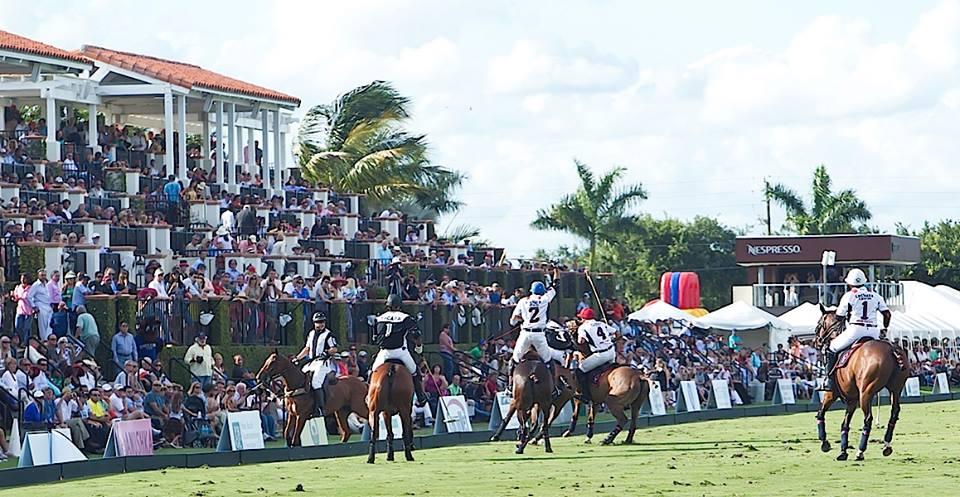 International Polo Club Webpagedepot