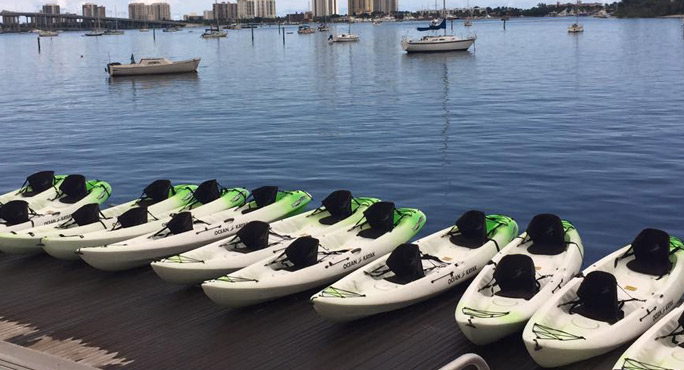 Paddle Boarding Palm Beach Cleanliness