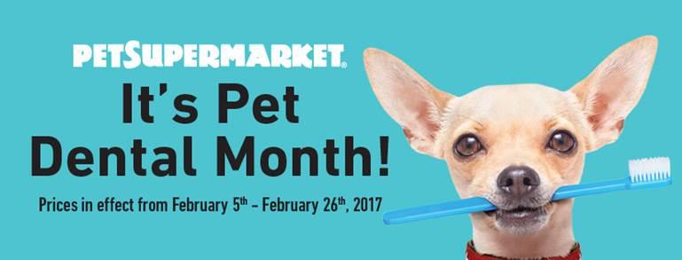 Pet Supermarket-Tequesta Webpagedepot