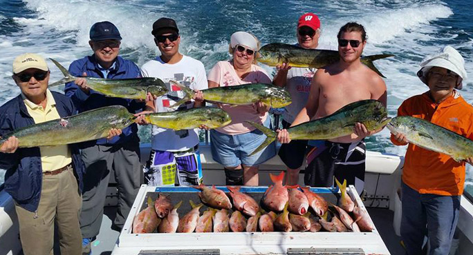 Sea Horse Fishing Charter Adventures Informative