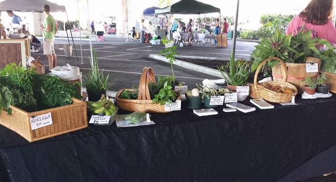 Seeds of Hope Community Garden - Lake Park Regulations