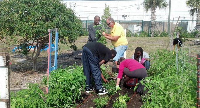 Seeds of Hope Community Garden - Lake Park Interaction