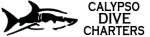 Calypso Dive Charters Calypso Dive Charters, Calypso Dive Charters, 200 East 13th Street, Riviera Beach, Florida, Palm Beach County, Water sport, Activity - Swim Scuba Dive, Scuba, Scuba Dive, Swim, dive, , Activity Swim Scuba Dive, animal, fishing, spearing, spear, trap, crab, shopping, sport, travel, Activities, fishing, skiing, flying, ballooning, swimming, golfing, shooting, hiking, racing, golfing