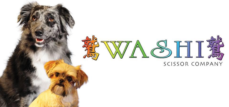 Washi Scissor - Tequesta Webpagedepot