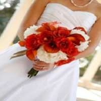West Knoxville Florist - Knoxville West Knoxville Florist - Knoxville, West Knoxville Florist - Knoxville, 10229 Kingston Pike, Knoxville, TN, , florist, Retail - Florist, flowers, plants, outdoor, indoor, , shopping, Shopping, Stores, Store, Retail Construction Supply, Retail Party, Retail Food