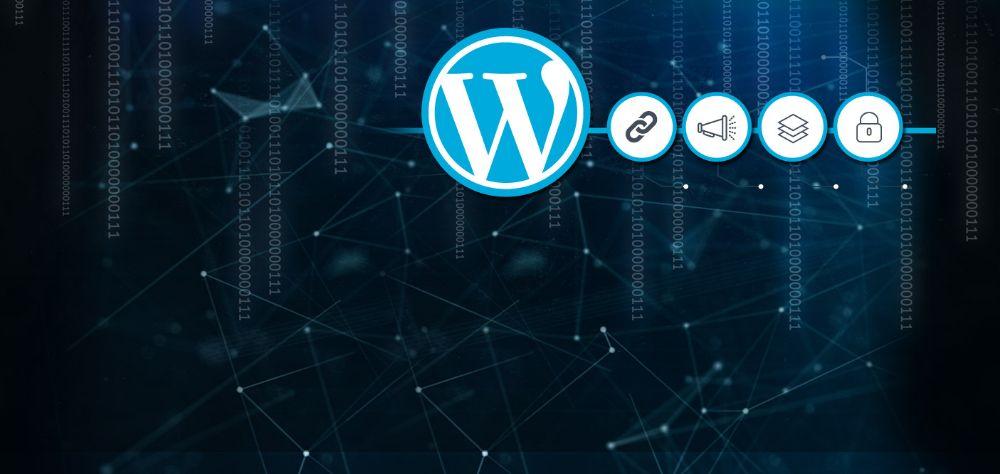 Fast Wordpress Developer Instant Development
