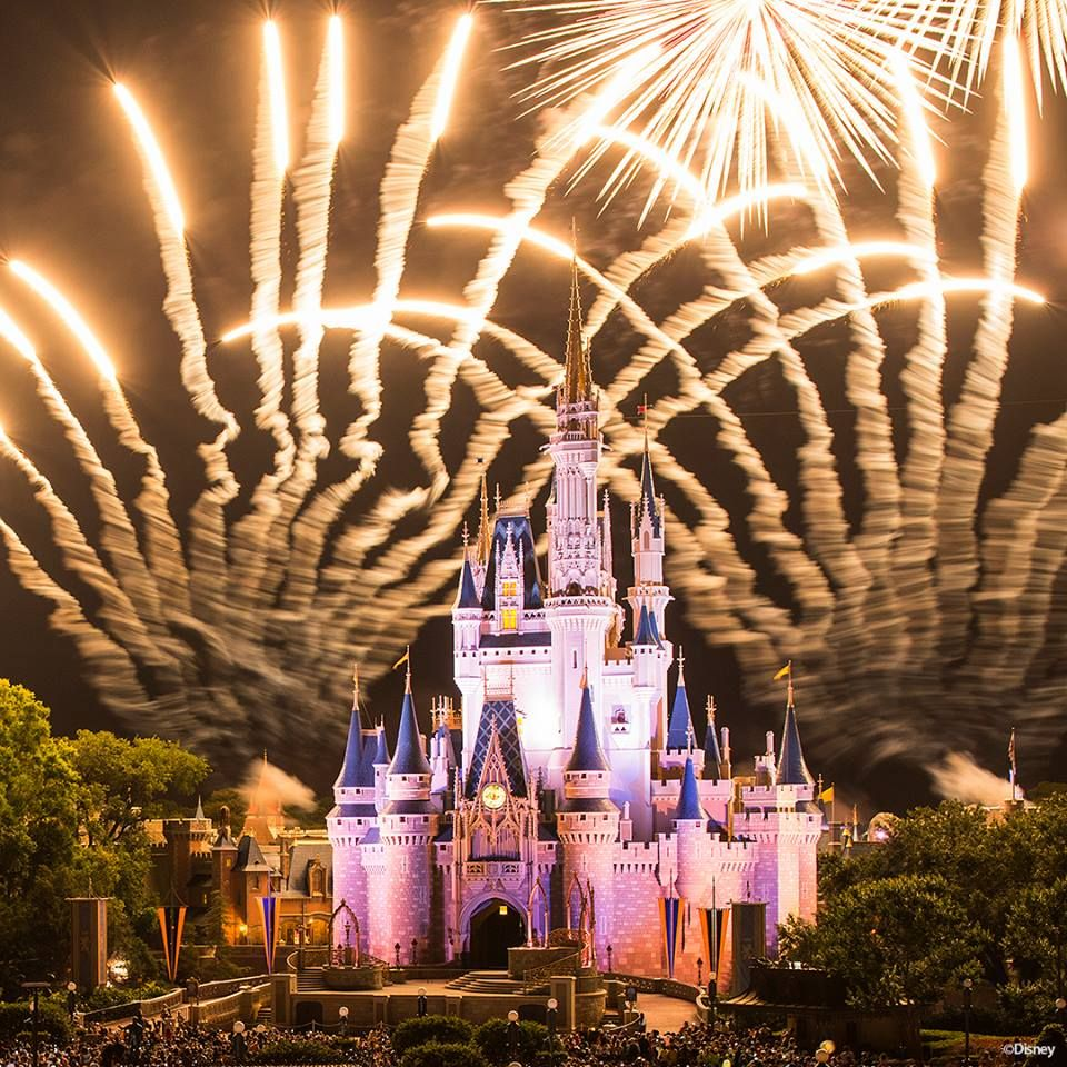 MagicGuides.com - Disney World Travel Information - Orlando Information