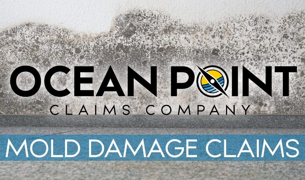 Ocean Point Claims Company - Florida Public Adjuster Information