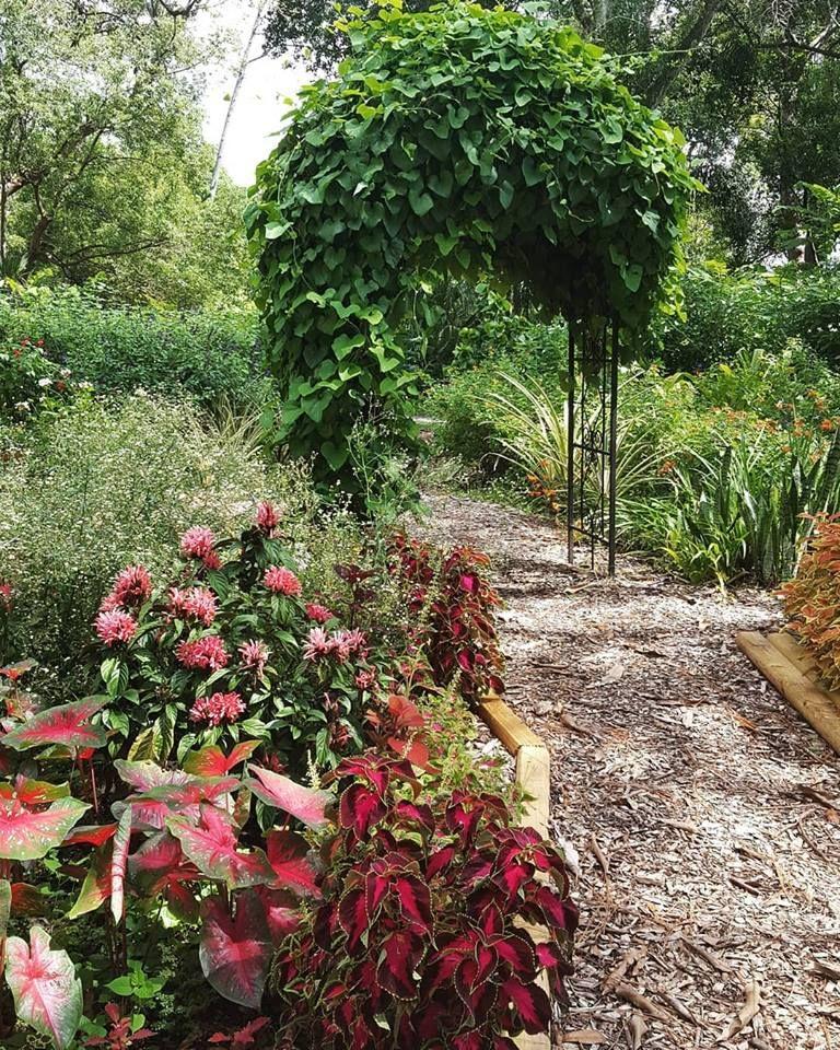 Mead Botanical Garden - Winter Park Organization