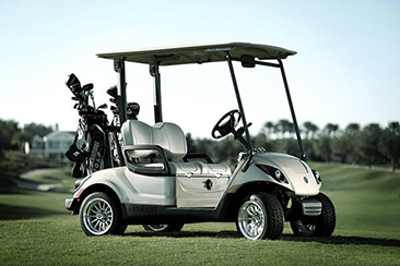 Southern Golf Cars - Delray Beach Wheelchairs